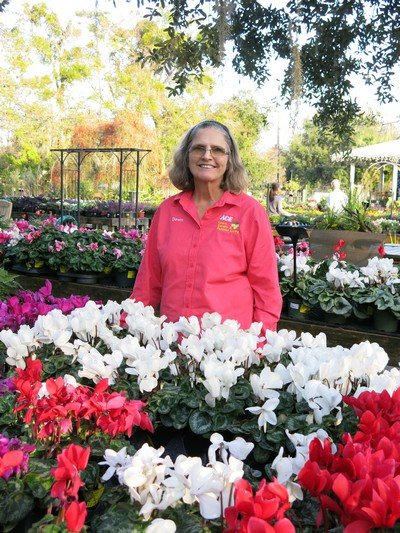 Dawn Hart draws from the beauty around her at ACE Garden Center to create a living donation to the silent auction.
