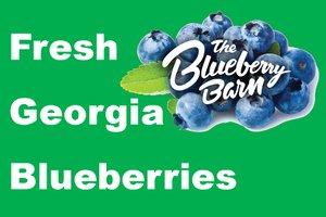 BlueberrySprocket