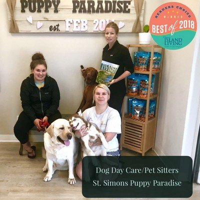 St Simons Puppy Paradise Bestof2018.jpg