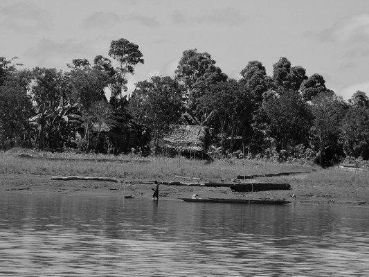Sepik River Scene
