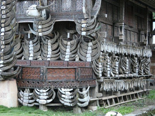 House with buffalo horns and pig jaws