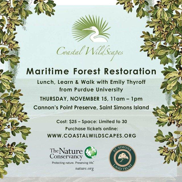 maritime forest resoration walk talk.jpg