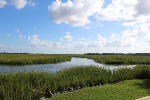 Village Creek Landing Marshes of Glynn