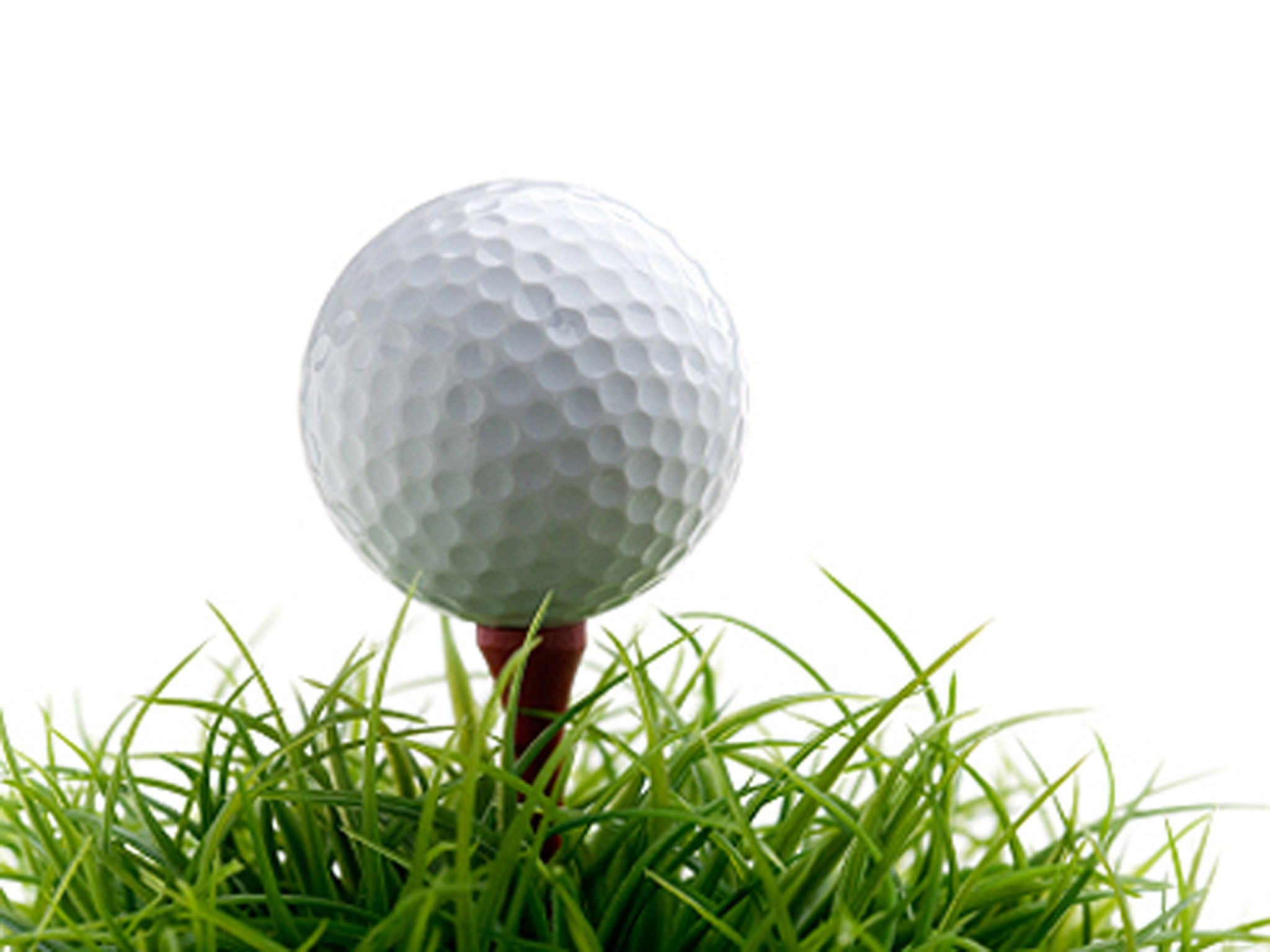 3rd annual grace house charity golf tournament
