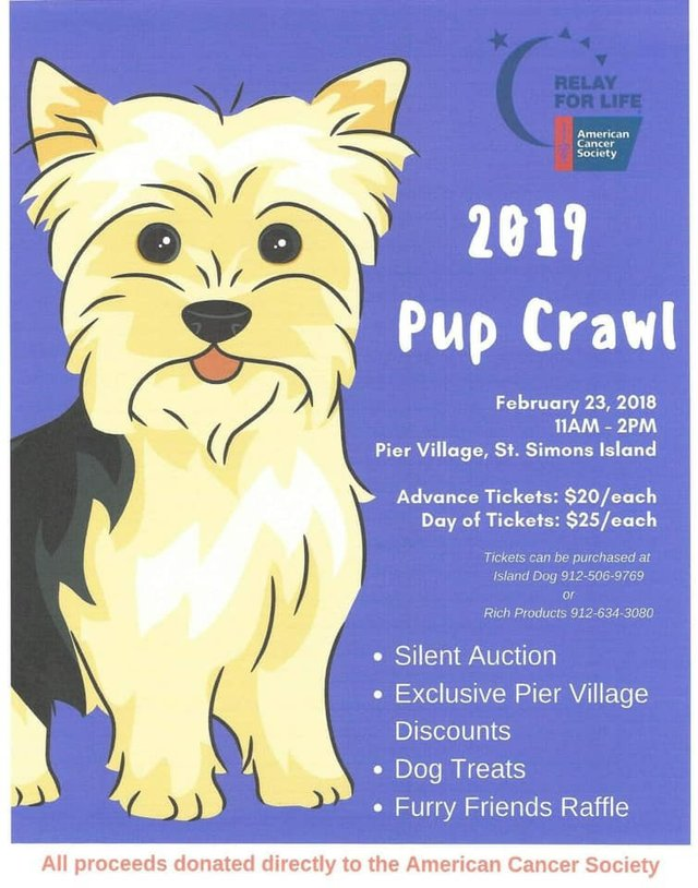 2019 Pup Crawl