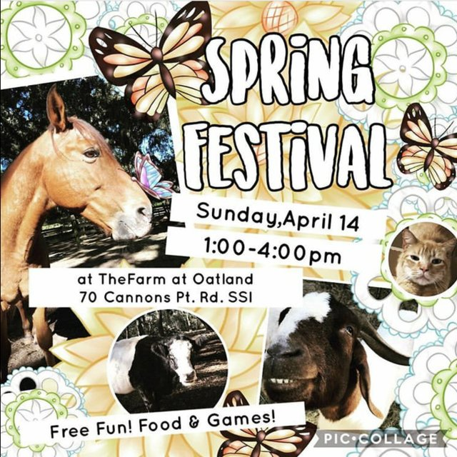 Spring Festival at The Farm 2019