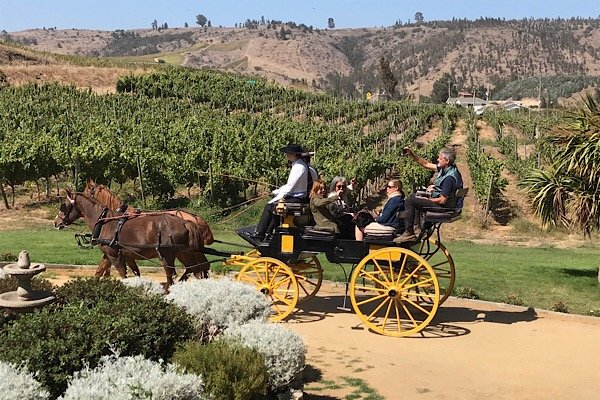 Carriage ride in Chile