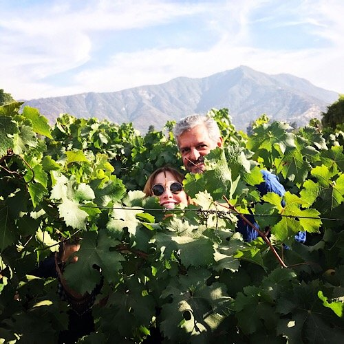 Playing in the Vines