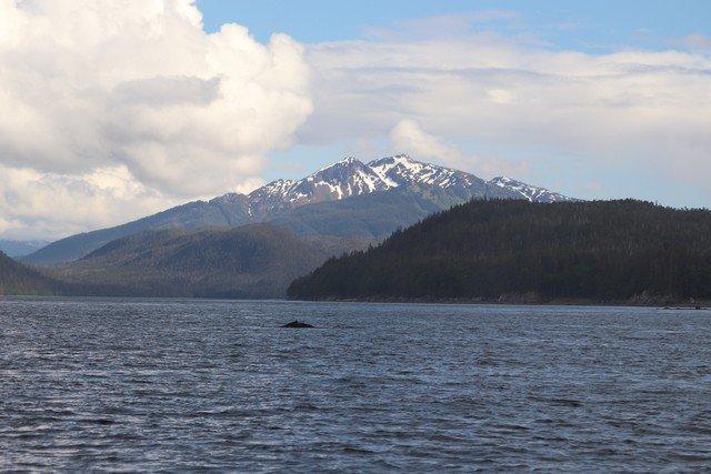 Alaska sm 1001.jpg