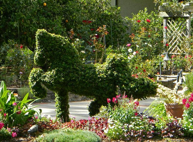 Garden6 Horse.jpg