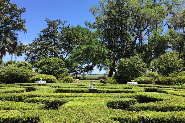 Memory Matters Garden Party Musgrove