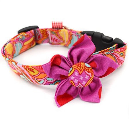Flower Dog Collar WillPower Ties