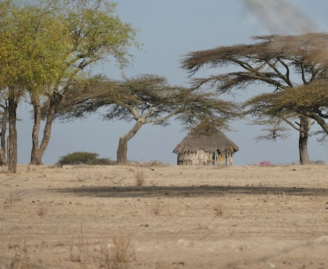 Tribal home in the bush