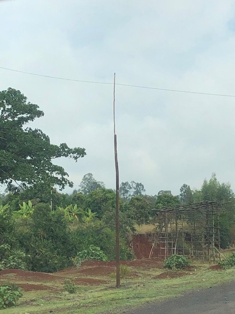A power pole....literally a couple of sticks with a wire