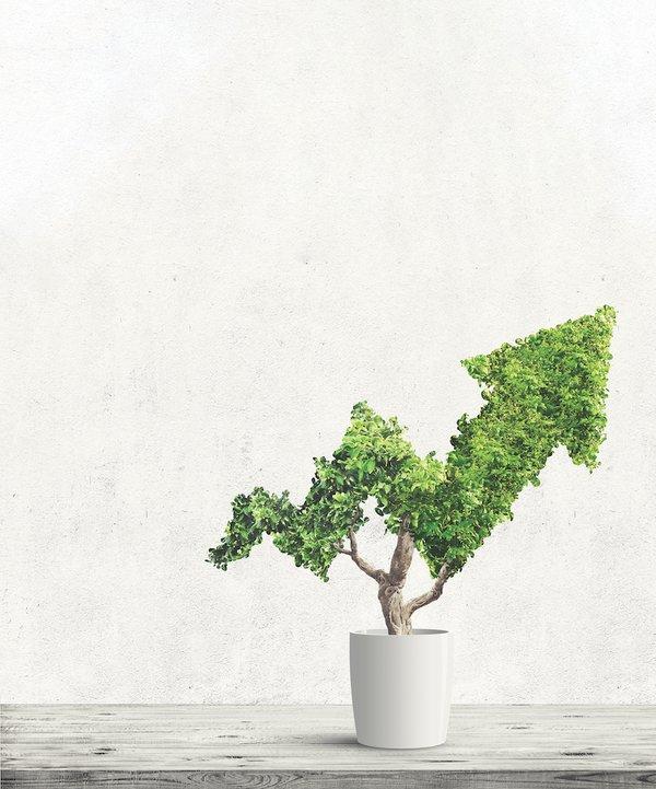 TreeArrow_Growth.png
