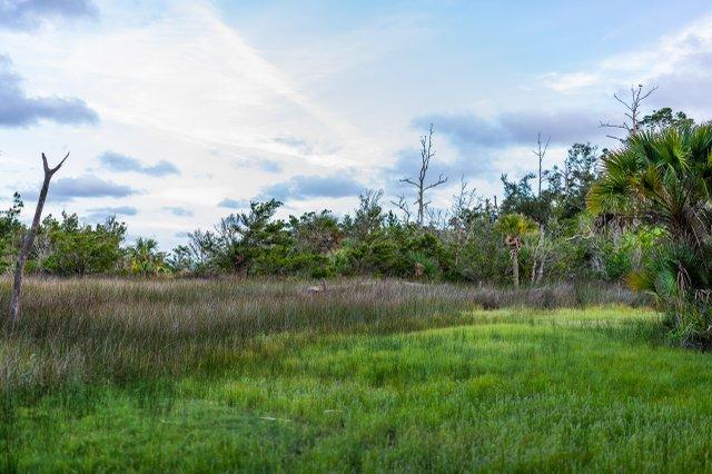 Oatland Marsh