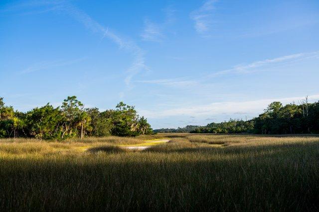 Oatland Marshscape