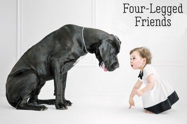 Four-legged Friends dog girl
