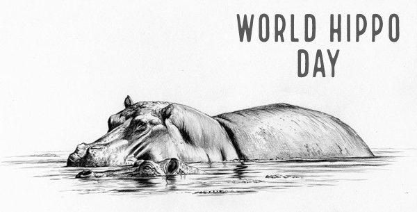 World Hippo Day