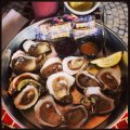 Catch 228 Oysters