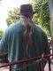 Asheville ponytail.jpg