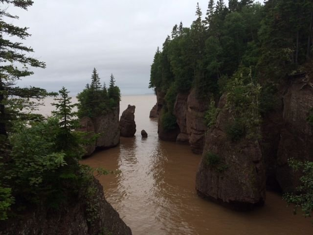 Bay of Fundy Beach high tide.jpg