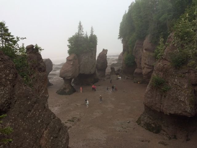 Bay of Fundy Beach Low Tide.jpg