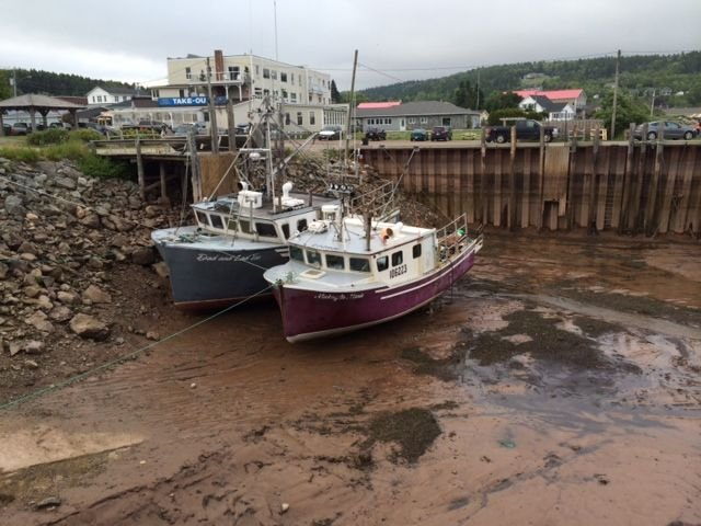 Lobster Boats at Low Tide Alma 1.jpg