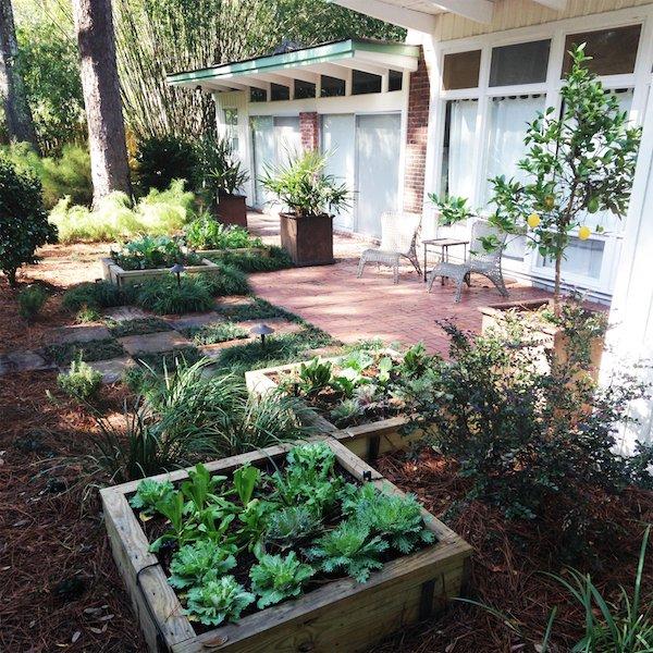 Jeff Homans garden