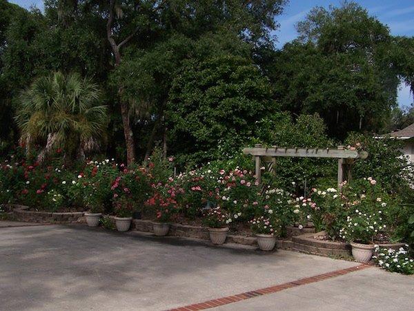 Cassina Garden Walk1.jpg