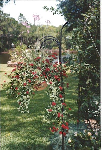 Cassina Garden Walk2.jpeg