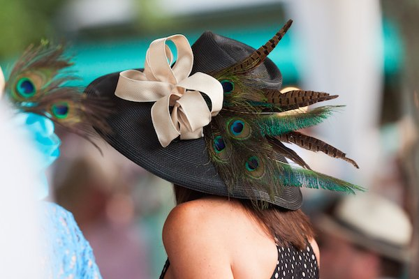 Derby Day peacock hat.jpg