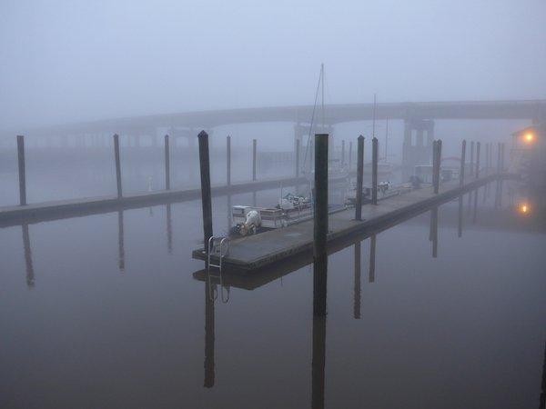 Darien Fog