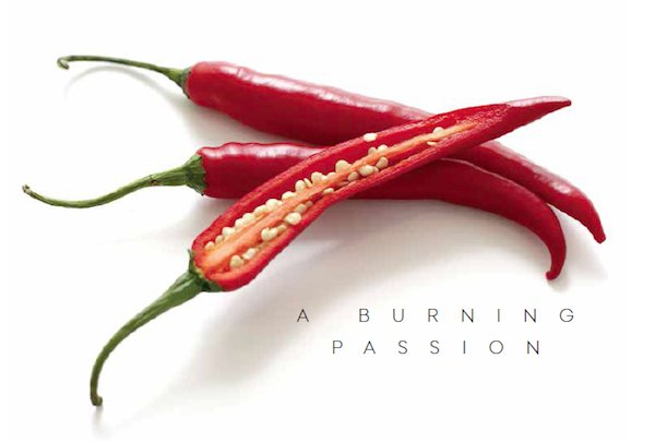 A Burning Passion Chiles.png