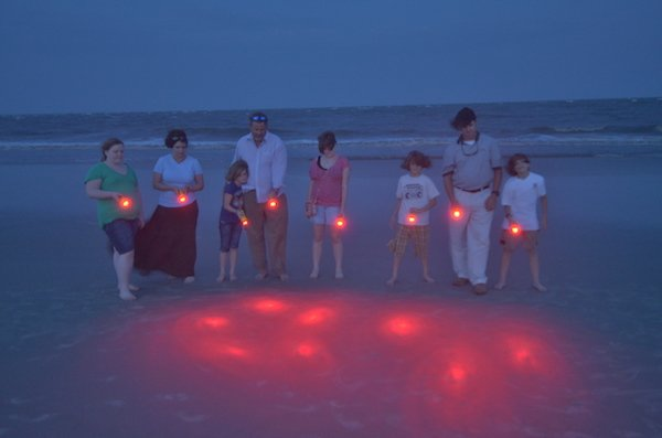 TurtleSafe lights.jpg