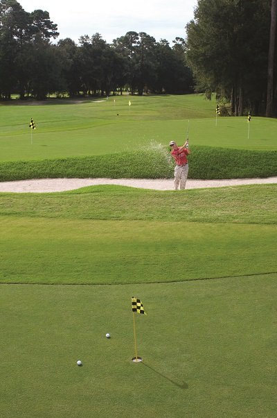 Golf Hampton.jpg