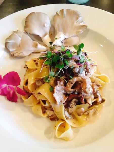 Mushroom Pasta Thats Italian.jpg