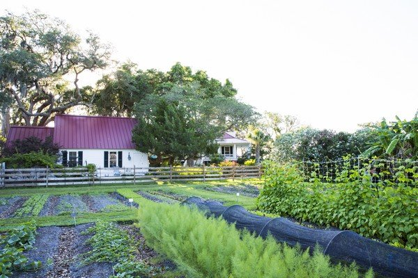 Greyfield Inn & gardens
