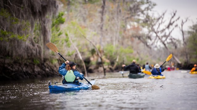 Altamaha River Paddle GA Conservancy