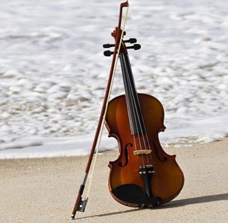 Coastal Symphony of Georgia