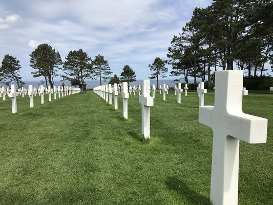 Crosses at the Normandy American Cemetery