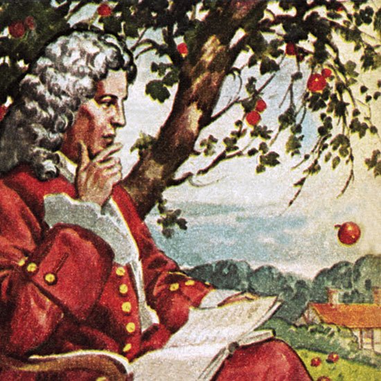 Isaac Newton Apple Tree.jpg