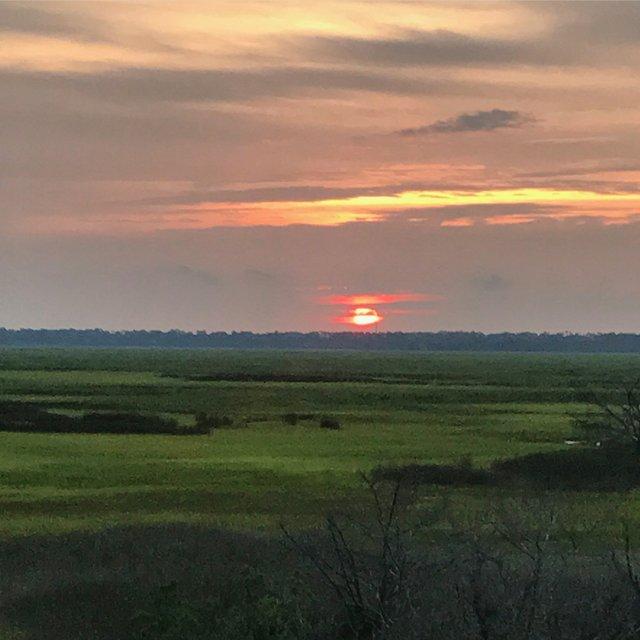 Marsh Photo Pre-Irma DB